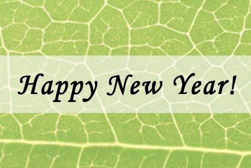 6 Simple Resolutions for a Green New Year