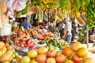 Sustainable Eating and Shopping