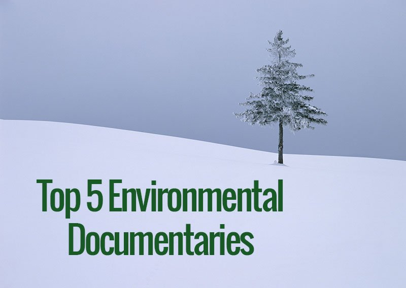 Top 5 Environmental Documentaries To Get You Thinking About Your Footprint