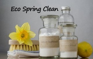 Eco Spring Clean