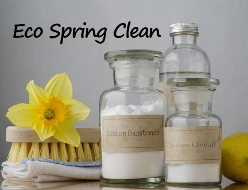 Eco Spring Clean: Refresh Your Home the Natural Way