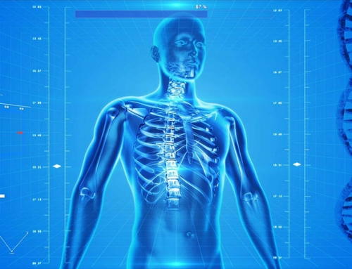 Minerals That Can Help Prevent Osteoporosis