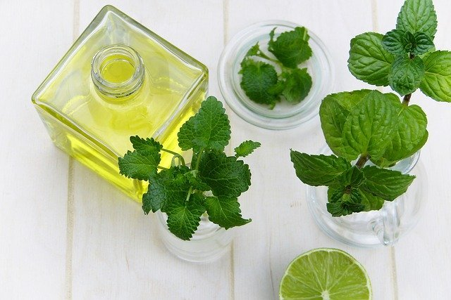 homemade skincare mint